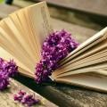 book-759873_1280 (1)