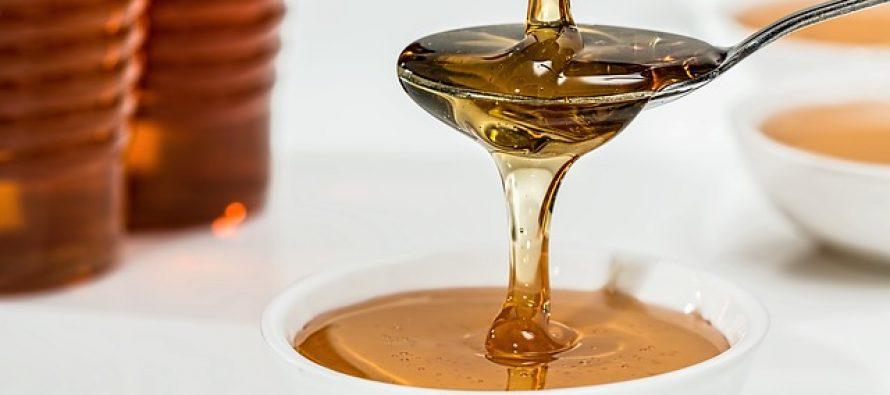 EU: Od 2021. povećava se finansiranje u pčelarstvo?