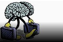 Koliko košta odliv mozgova?